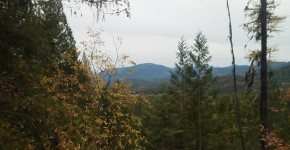 Huckleberry Ridge | 20 Acres SOLD